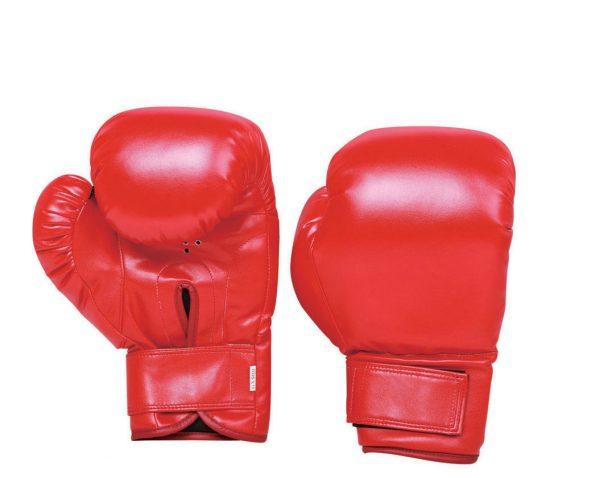Xebec Boxing Glove