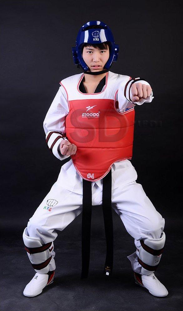 protector-taekwondo